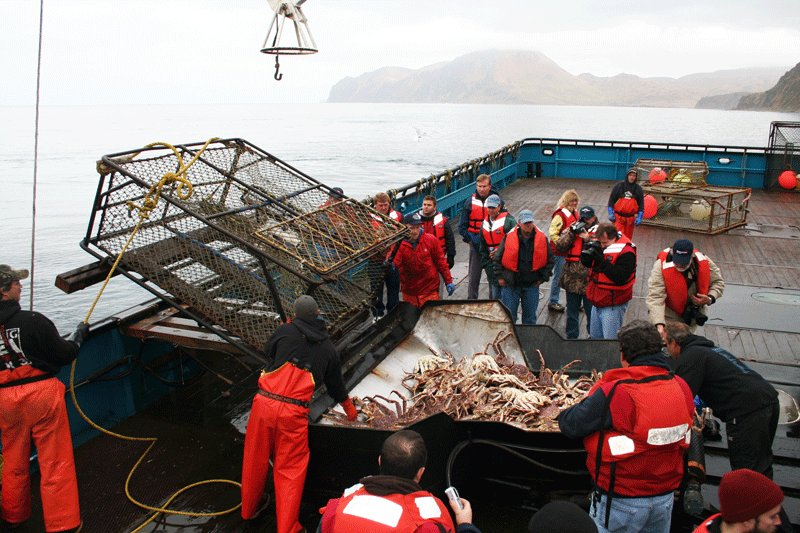 the alaskan king crab shutdown and its negative effects
